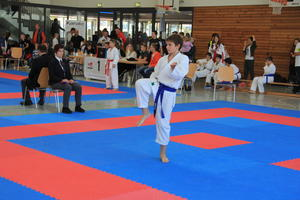 Int. Deutscher Goju-Ryu-Karate-Cup in Eppingen