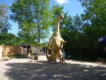 Dinosaurierpark Nationalparkzentrum Eifel - Luxemburg