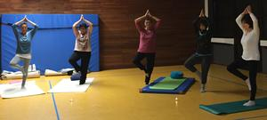 Hatha Yoga in der Turnhalle Pestalozzischule