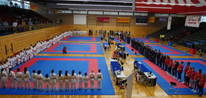 Best Fighter Cup in Elsenfeld